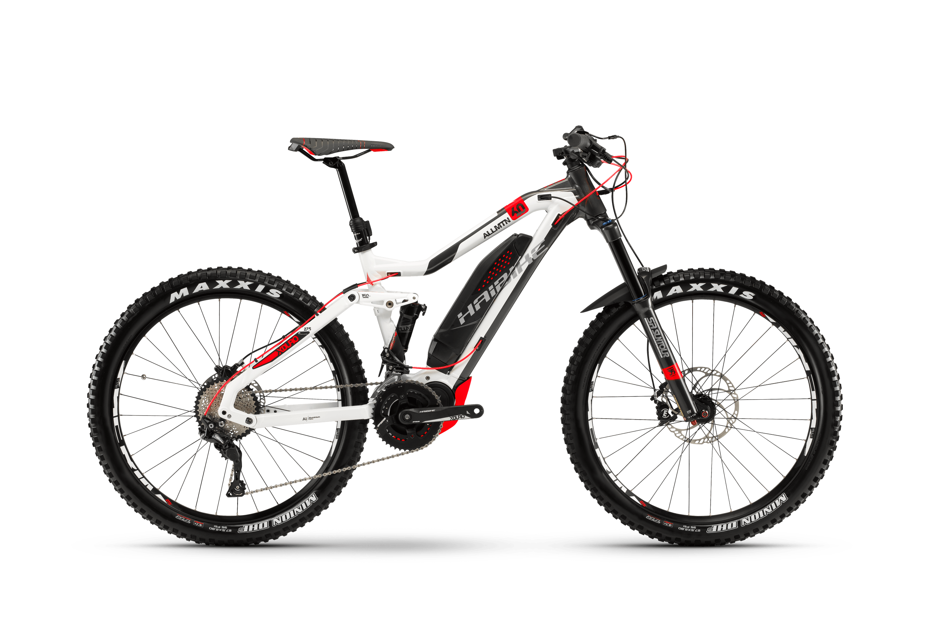 E-bike or bike rental